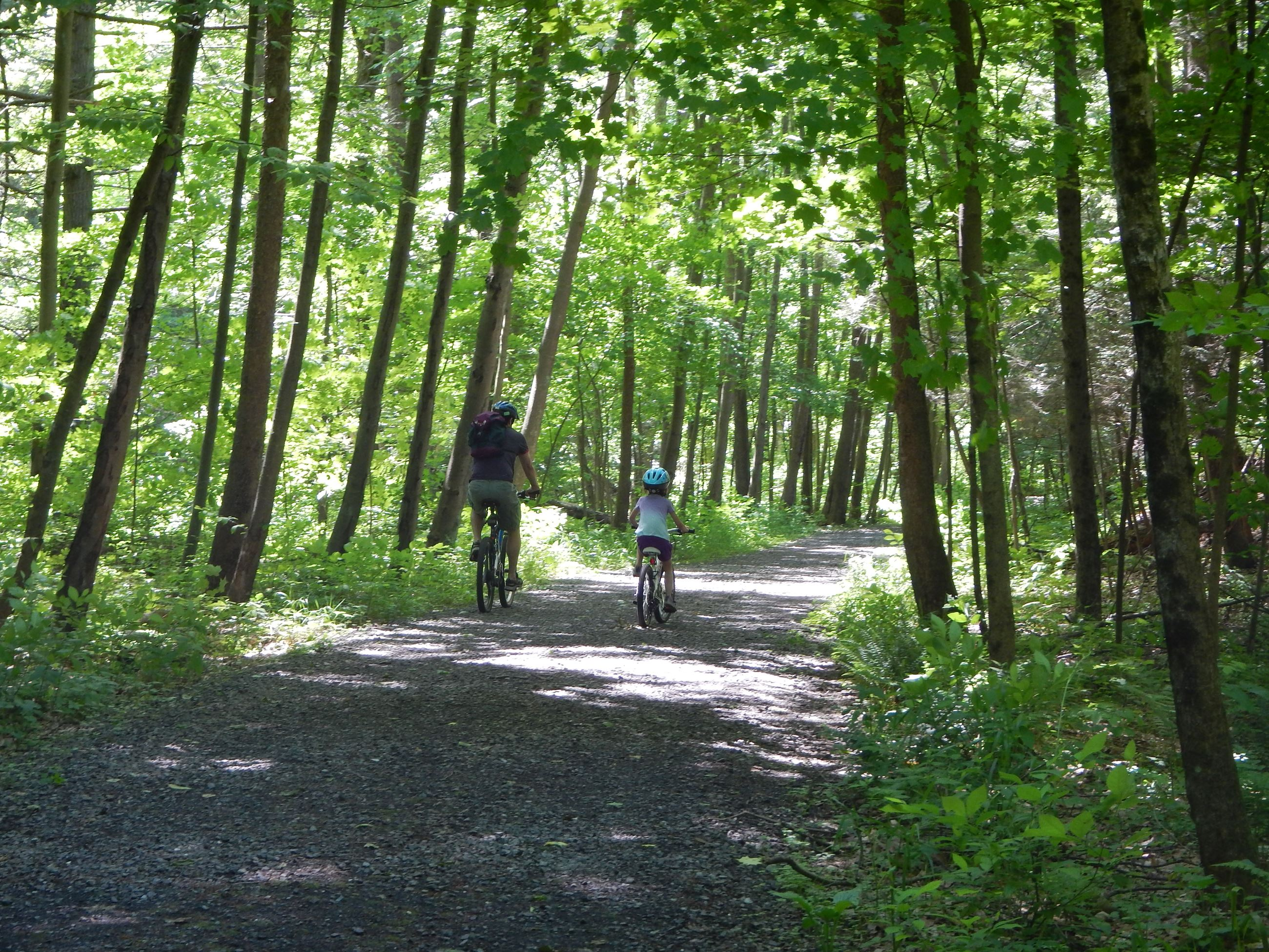 Bicycling the trail