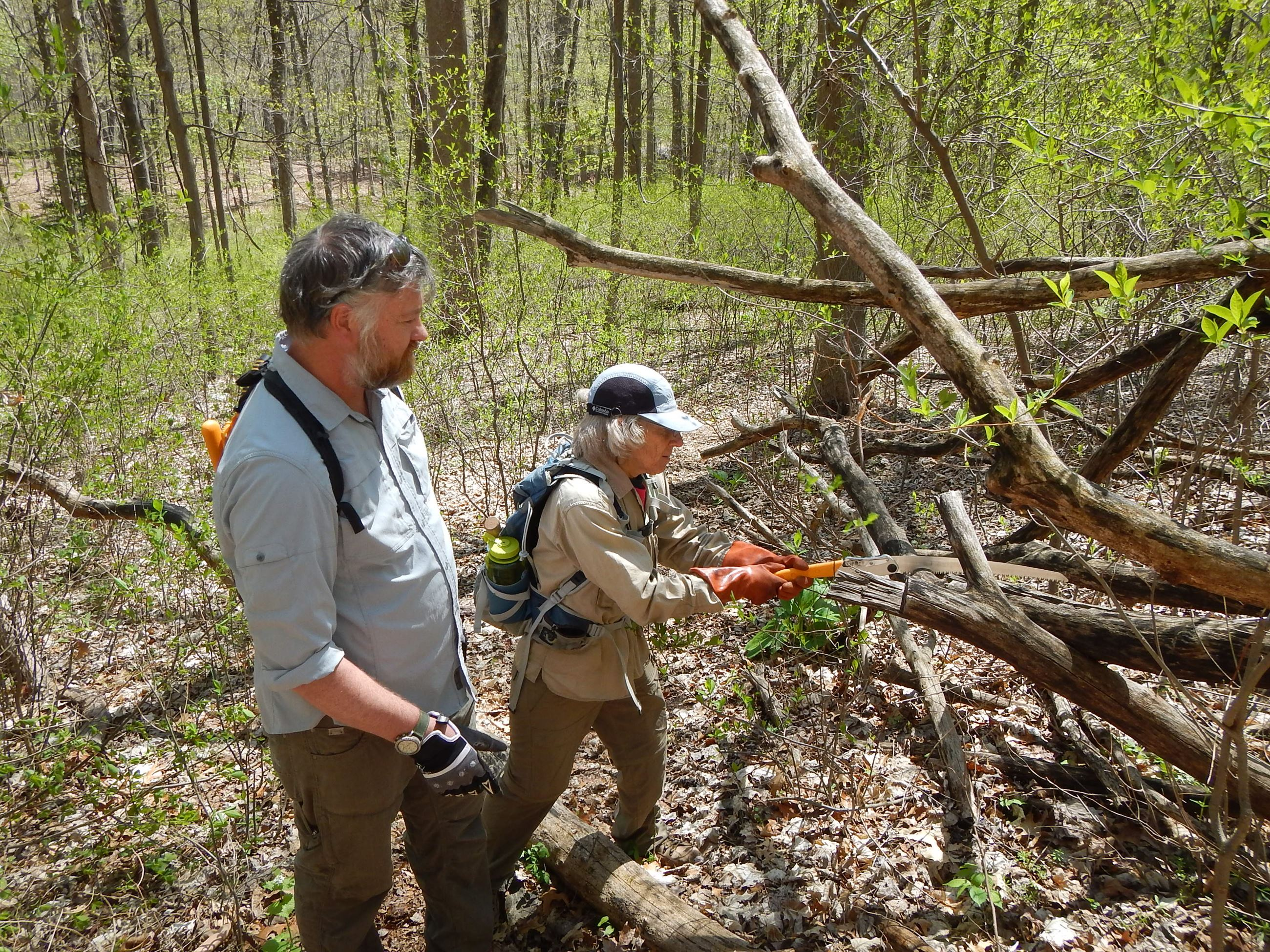 Trail maintenance workshop (sawing)