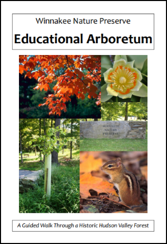 Winnekke Arboretum Guide Cover