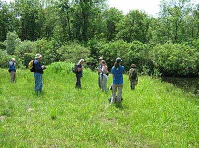 Volunteers learn to identify critical wildlife habitat in the field